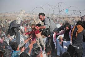 migration image